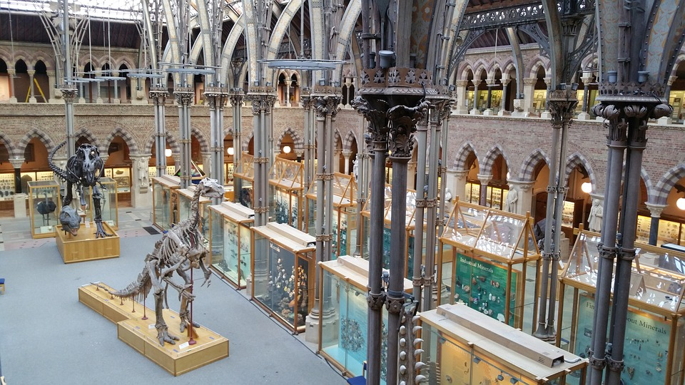 Hét iskolába látogat el a tanévben a Mozaik Múzeumtúra